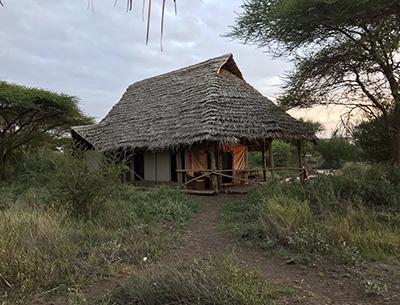 Kambi ya Tembo